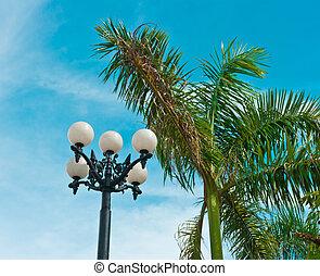 Vintage street lantern and palm tree