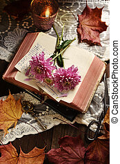 vintage style still life with opened book and flowers