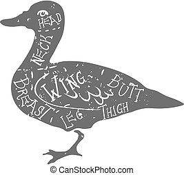 Vintage typographic duck butcher cuts diagram Vector