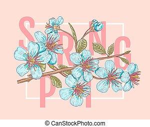 Spring and sakura