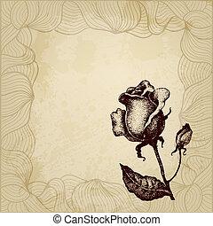 Vintage vector rose background