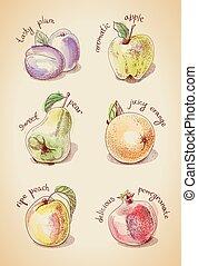 Vintage vector set of fruits