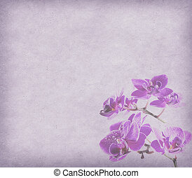 vintage wallpaper background with orchid