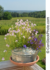 Vintage watering can of flowers with a countryside background