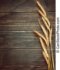 Vintage wheat background - Textured rustic old vintage wheat...