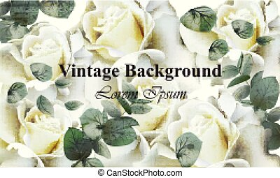 Vintage white roses background Vector. Retro floral designs
