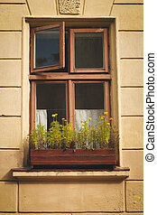 Vintage window with flowers