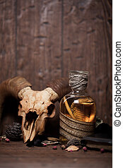 Vintage witchcraft still life with snake cobra and skull.