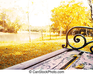 vintage wooden bench in the autumn park.