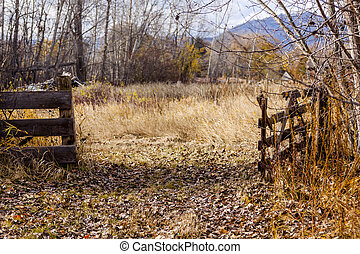Vintage Wooden Field Gate