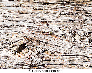 vintage wooden wall at outdoors