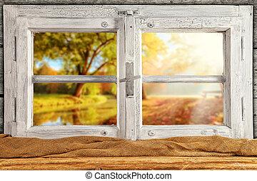 Vintage wooden window overlook autumn trees, shot from...