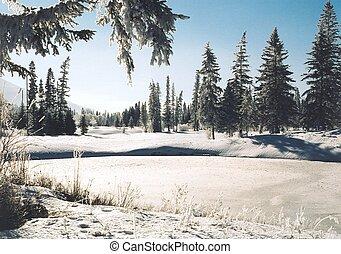 vinter, berättelse