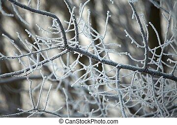 vinter beskaffenhet