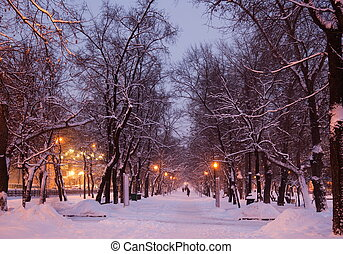 vinter, evening., moscow., russia.