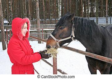vinter, flicka, med, häst