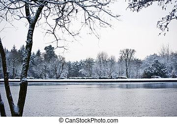 vinter, insjö, landskap
