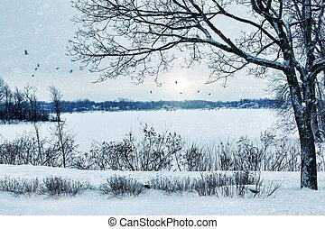 vinter landskap, överse, a, insjö