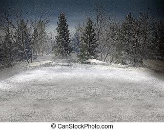 vinter, landskap.