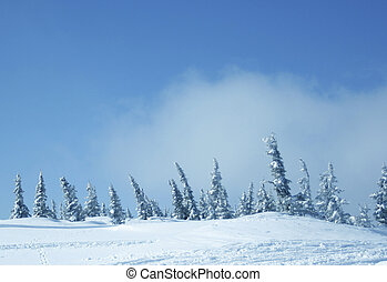 vinter, mountains