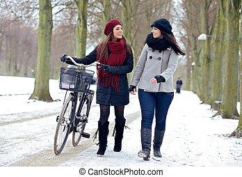 vinter, parkera, två, gå, avnjut, vänner
