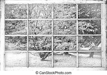 vinter, snö scen, genom fönster