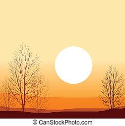 vinter, solnedgang