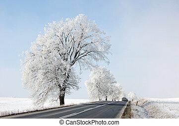 vinter tajma