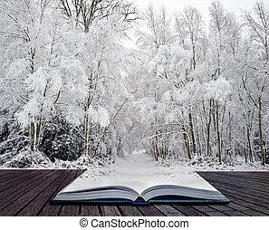 vinter underland, in, sidor, av, magisk, bok