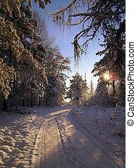 vinter, väg