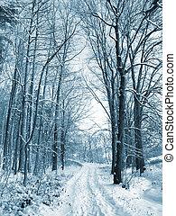 vinter, väg, till, wood., den, träd, höjande, med, snö