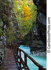 Vintgar gorge and wooden path near Bled, Slovenia. Europe