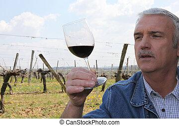 Vintner vineyard in front of glass of wine