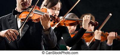 violín, amaestrado, orquesta