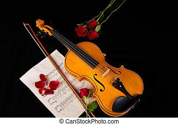 violín, música hoja, y, rosa
