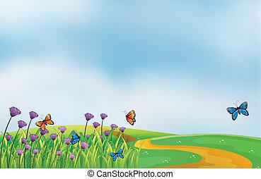 viol blommar, längs, den, väg