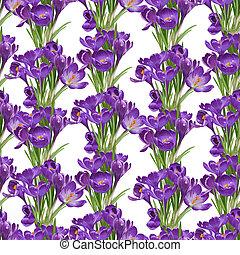 viola, crocuses, seamless, primavera, modello