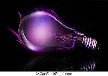 viola, lampadina