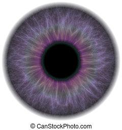 viola, occhio, iride