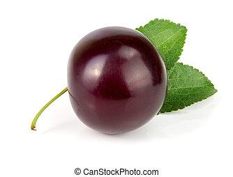 viola, prugna, con, foglie, isolato, bianco, fondo