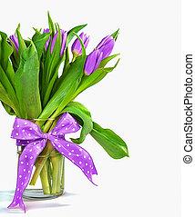 viola, tulipano, mazzolino, arco