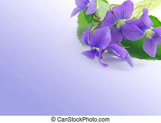 violer