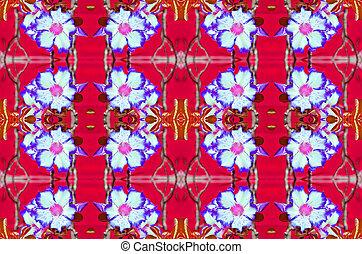 Adenium obesum - Violet Adenium obesum on red background