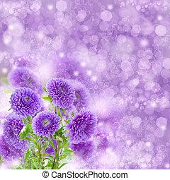 bouquet of fresh violet aster flowers on violet bokeh background