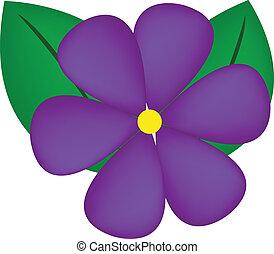 violet flower - vector