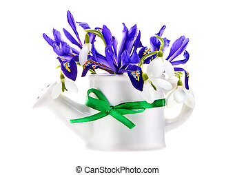 violet iris flower with snowdrop on white isolated