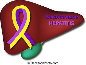 Violet yellow ribbon on the liver. Autoimmune hepatitis....