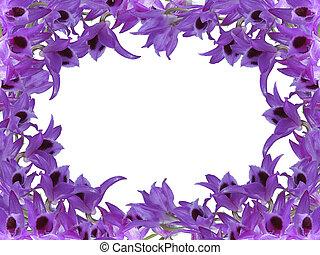 Flor, encima, plano de fondo, violeta, blanco, marco.