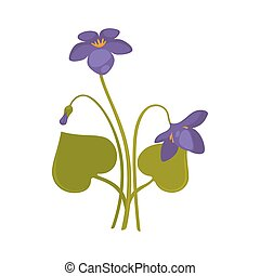 Violets bunch isolated on white close up vector picture....