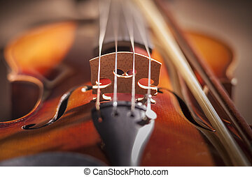 Violin bridge with very limited depth of field